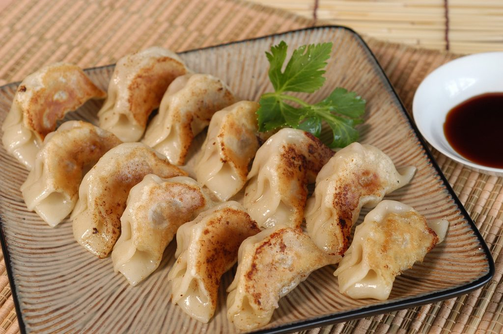 slow cooker vs rice cooker? - slow cooker gyoza